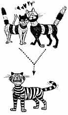 Hannoverscher katzen club e v ein herz für alle katzen schützen
